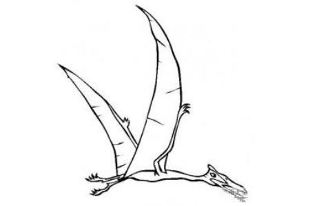 恐龙图片大全 风神翼龙简笔画图片
