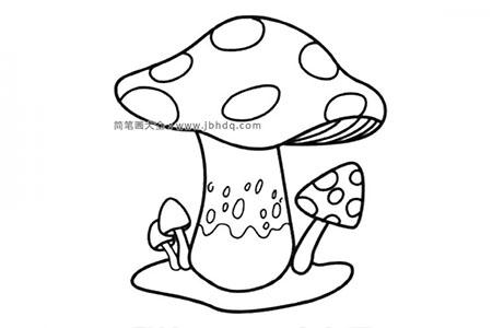 大蘑菇小蘑菇