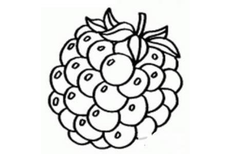 香甜的葡萄简笔画