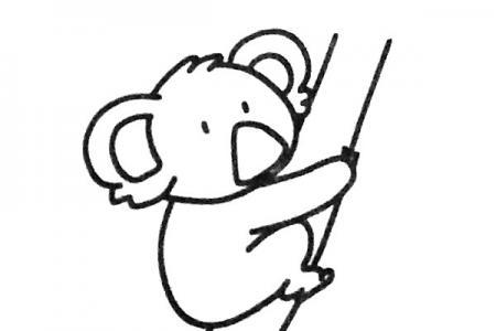 四步学画可爱的考拉