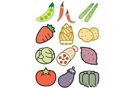 三张彩色蔬菜简笔画图片