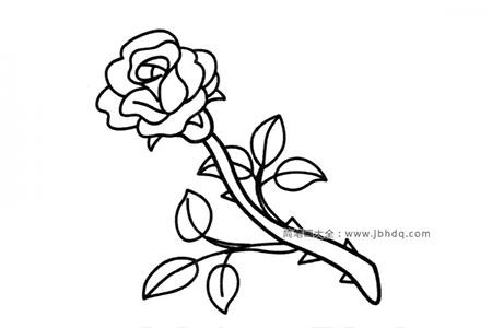 节日花朵玫瑰花