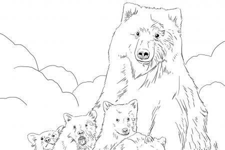 灰熊妈妈和幼崽