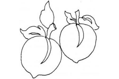 桃子的画法