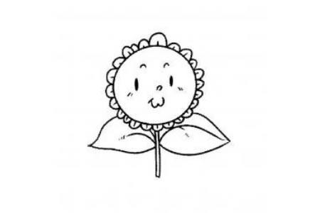 胖嘟嘟的向日葵