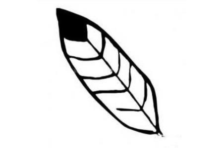 简单的树叶简笔画