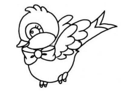 带着领结的小鸟