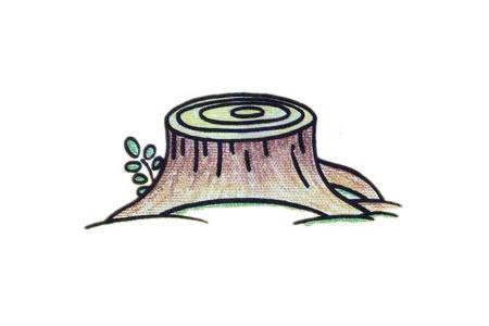 树桩简笔画教程
