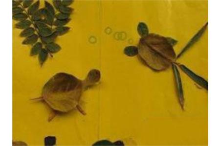树叶贴画作品:小乌龟