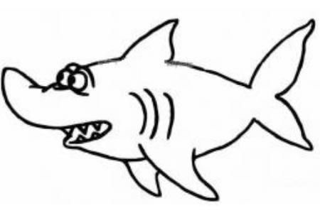海中漫游的鲨鱼
