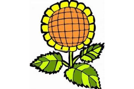 彩色向日葵简笔画图片
