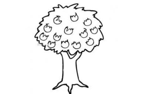 丰收季节的果树简笔画