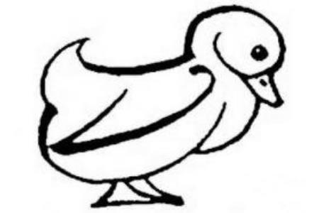生动的小鸭子简笔画