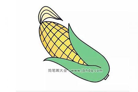 五步骤画出美味的玉米
