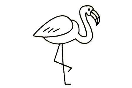 火烈鸟简笔画大全及画法步骤