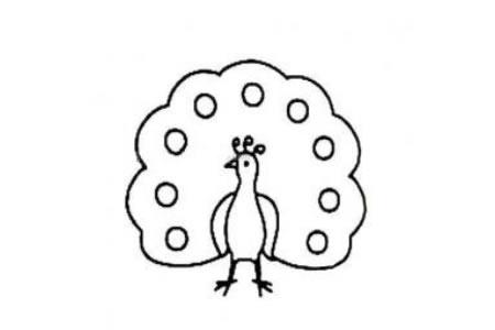 幼儿孔雀简笔画图片