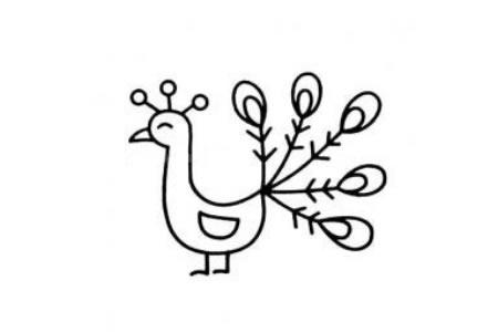 四张幼儿简笔画孔雀