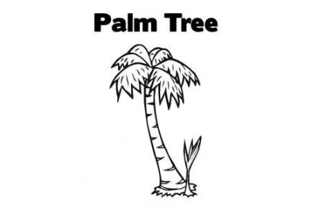 植物简笔画大全 椰子树简笔画