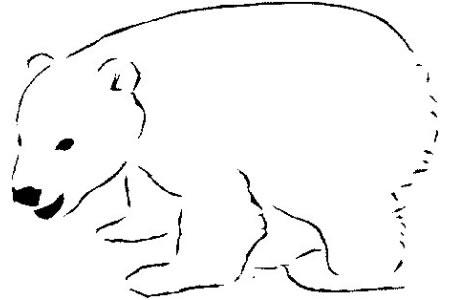 可爱的小北极熊