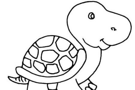 如何画卡通乌龟简笔画