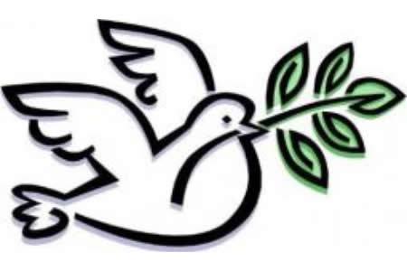 两张含着树枝的鸽子简笔画