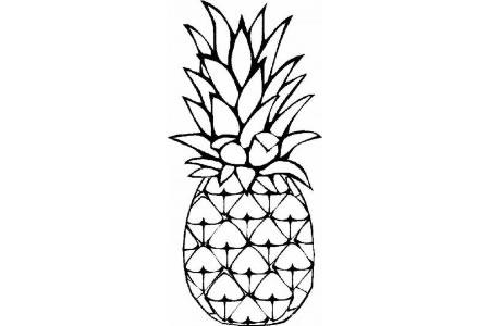 水果简笔画大全 菠萝简笔画