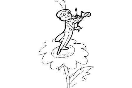 蚱蜢在花上演奏小提琴