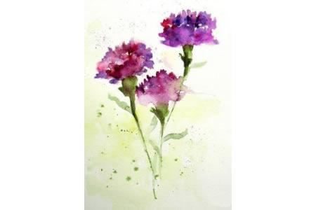 漂亮的康乃馨三八妇女节绘画图片欣赏
