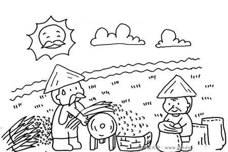 秋季丰收简笔画:收割稻子