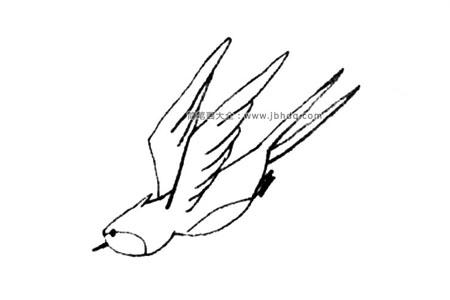 俯冲的燕子简笔画教程