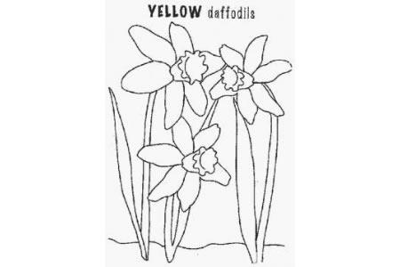 花朵简笔画大全 黄水仙简笔画