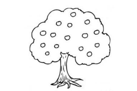 儿童植物简笔画果树