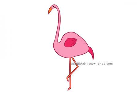 漂亮的火烈鸟简笔画