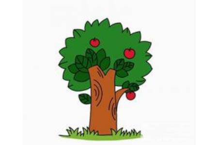 果树的画法简笔画