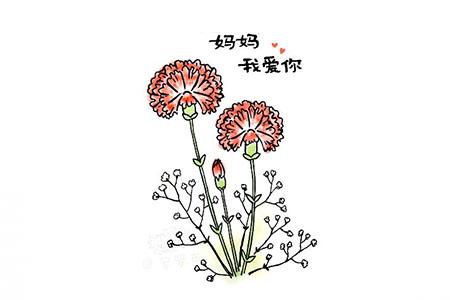 画一束漂亮的康乃馨简笔画