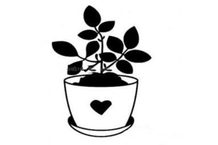 桌面小盆栽简笔画