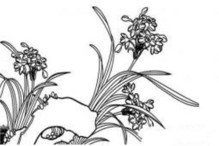 儿童花朵简笔画 水仙花