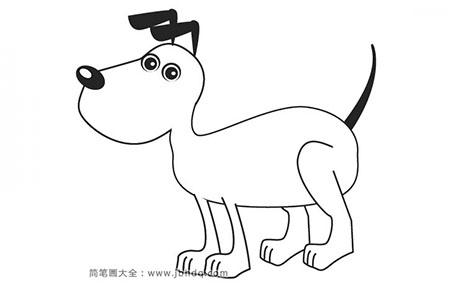 听话的狗狗