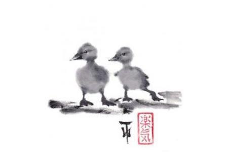 毛绒绒的小鸭子动物国画