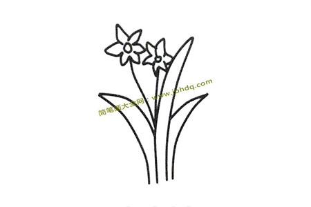 分步学画水仙花