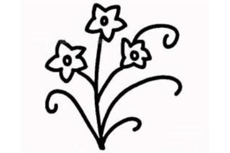 水仙花的简单画法