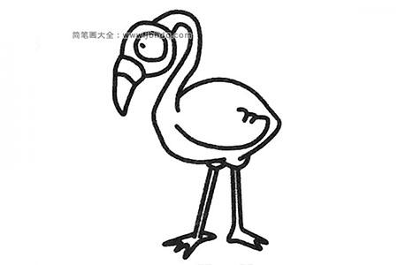 简单的火烈鸟简笔画教程