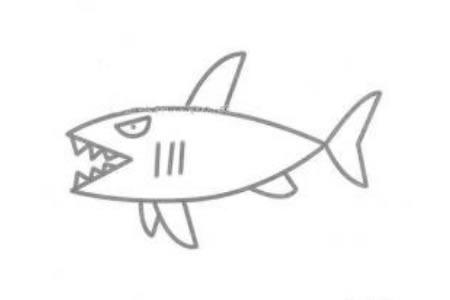 鲨鱼简笔画图片