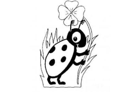 七星瓢虫简笔画 漂亮的七星瓢虫