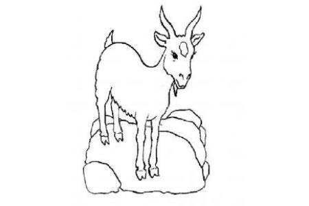 一组羊的简笔画图片