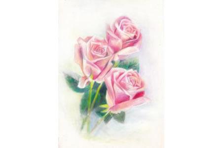 玫瑰花手绘彩铅作品之一束玫瑰花