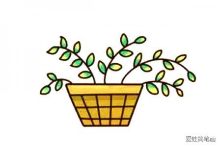 漂亮的多肉植物简笔画3