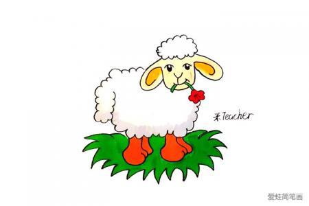 小绵羊怎么画