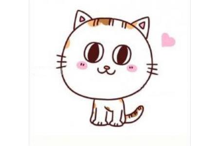 可爱的小花猫简笔画教程