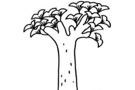 银杏树简笔画